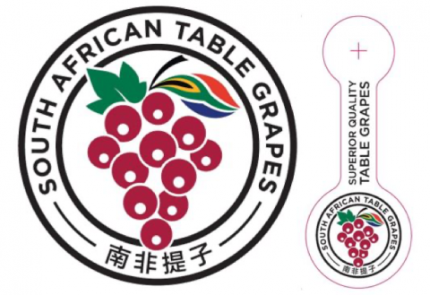 南非提子行业协会专门设计了一个带有中英文标识的logo